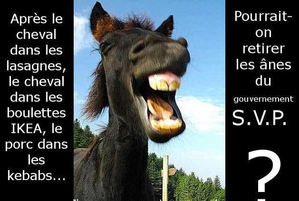 humour d'âne