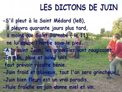 proverbes et dictons page 4